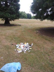 Westmoreland Park 1