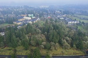 Gladstone Nature Park Drone Shot