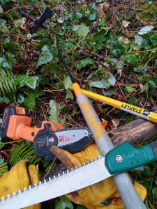 TOOLS FOR IVY CLEARING (1)